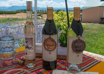 Mesa Winds' award winning wines