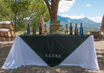 Azura wine display
