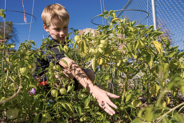 Chipotle Is Now Supporting 100 School Gardens Across The U.S.