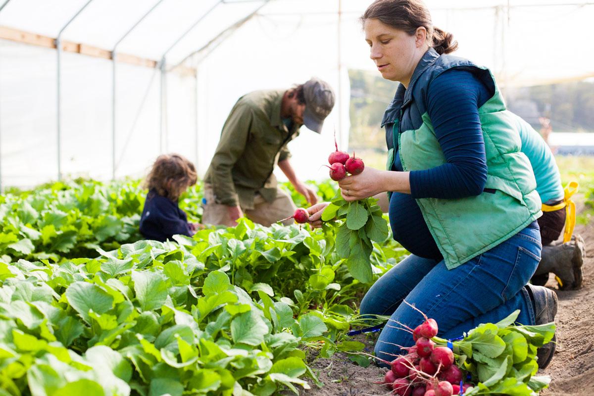 women-farmers-grower