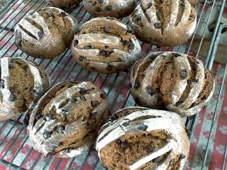 Small Potatoes Bakery Fires Up Western Slope