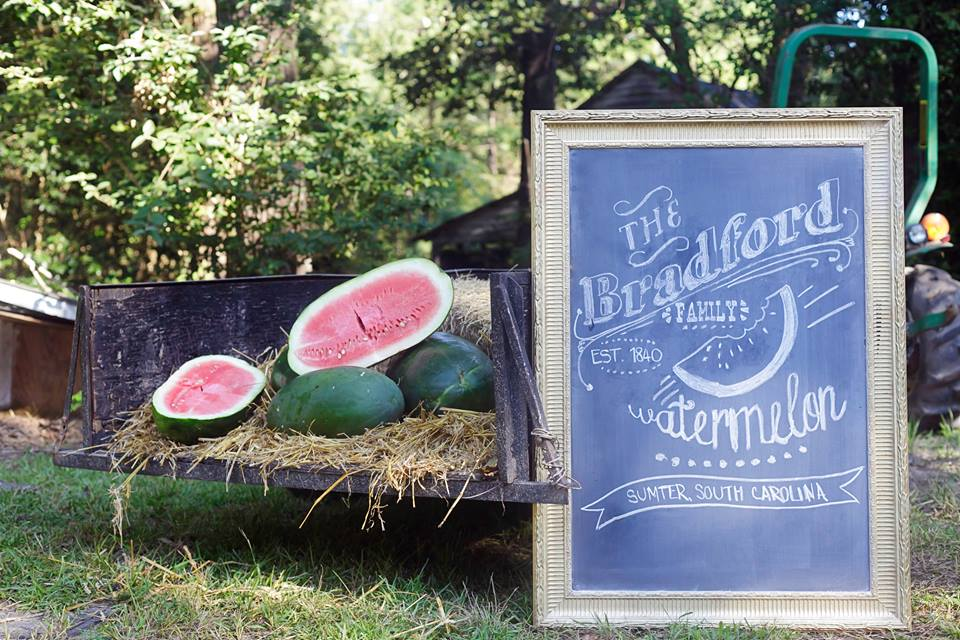 Bradford watermelons