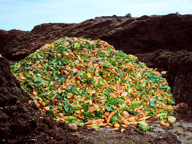 Supermarket food waste image