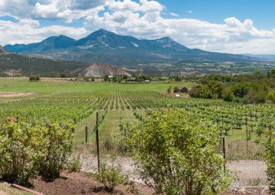 West Elks Wine Trail – Aug 4-6